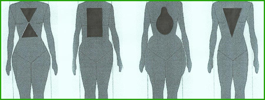 Different Body Types Image at FoodzPack