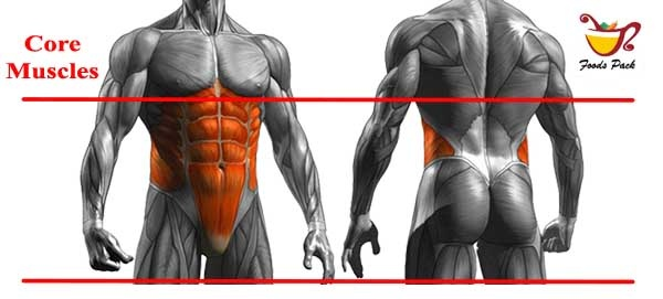 Image Showing Core Muscles of Body