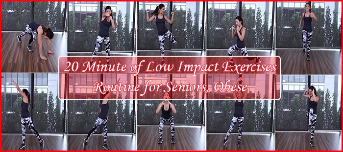 Feature Image Low Impact Exercises Routine