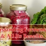 8 Benefits of Fermentation Prove It's a Blessing to Mankind